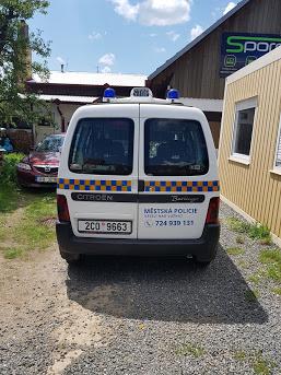 polep auta městská policie veselí nad lužnicí